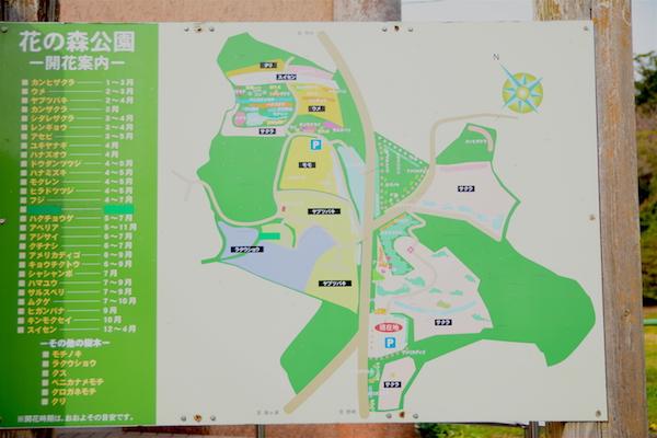 花の森公園の案内図