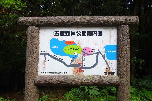 五蔵森林公園案内図