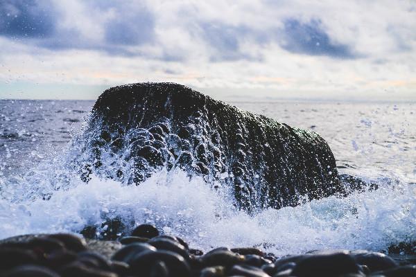splash05