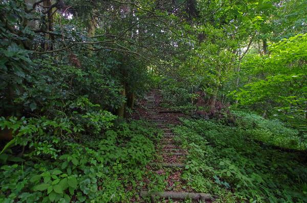五蔵森林公園の階段