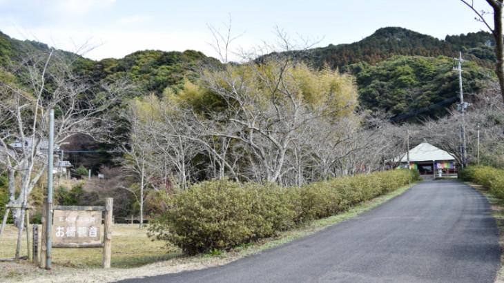 御橋観音の入口と桜並木