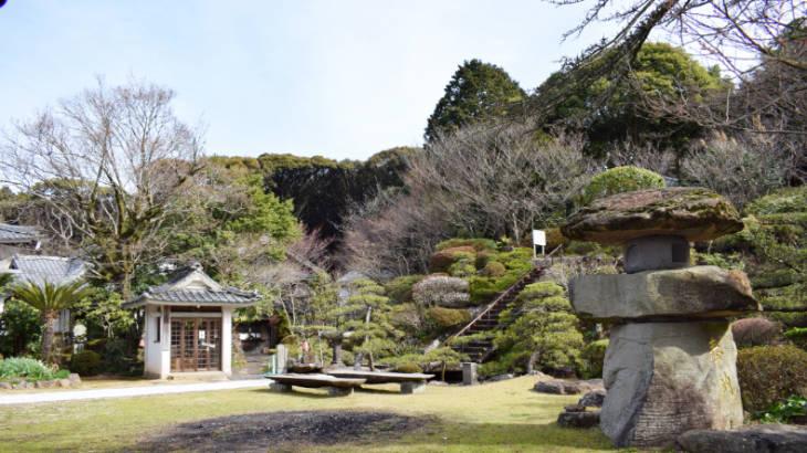 西光寺の花見スポット