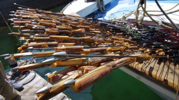 赤マテ貝の突き漁
