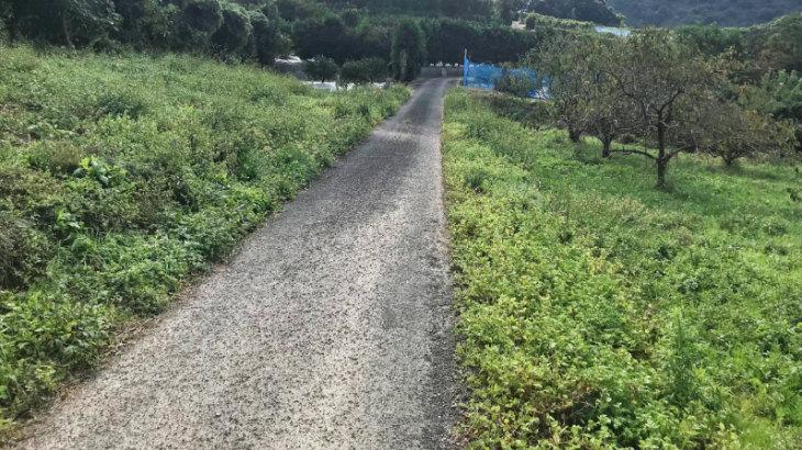 鬼塚古墳への道1