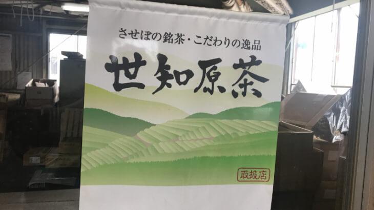 世知原茶04