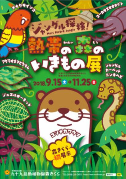 ジャングル探検チラシ