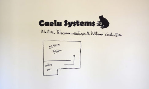 カエルシステムズ