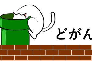 土管に入る猫