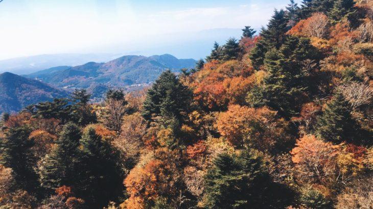 仁田峠の紅葉