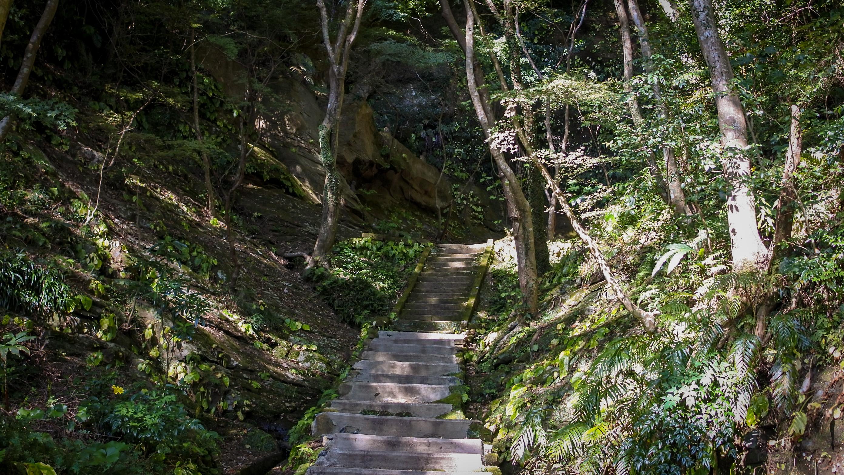 石橋に続く階段