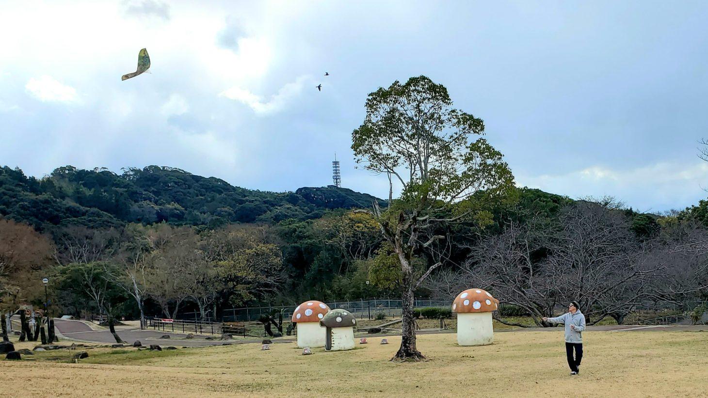 天神公園凧