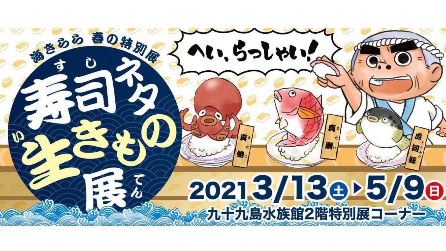 海きらら 寿司ネタ生きもの展