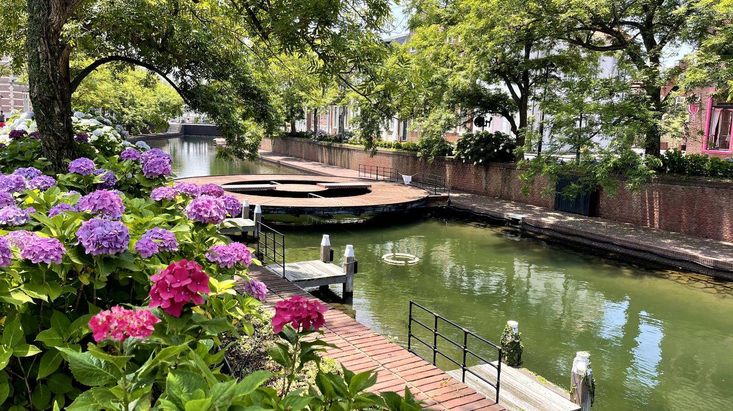 運河とあじさい